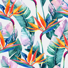 FototapetaWatercolor tropical seamless pattern with bird-of-paradise flower.