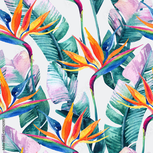 Fotobehang Paradijsvogel bloem Watercolor tropical seamless pattern with bird-of-paradise flower.