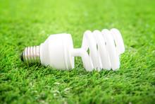 Energy Efficient Light Bulb On...