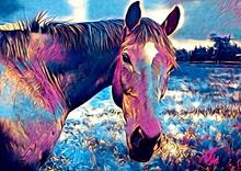 Freehand Horse Art Illustratio...
