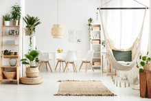 Dining Room With Plants