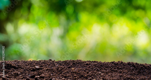 Foto soil texture with green background