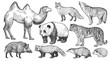 Realistic animals set.