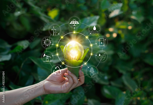 Fotobehang Natuur Hand holding light bulb on green nature with icons energy sources for renewable, sustainable development. Ecology concept. Elements of this image furnished by NASA.