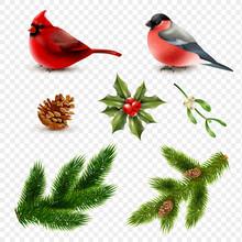 Winter Birds Fir Branches Set