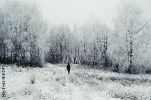 Aluminium Prints Bison man walking in magical winter landscape with snow and frozen trees