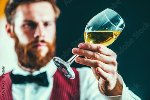 Fototapeta Sommelier examining white wine