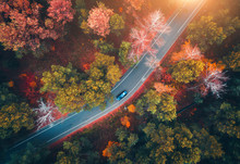 Aerial View Of Road With Blurred Car In Autumn Forest At Sunset. Amazing Landscape With Rural Road, Trees With Red And Orange Leaves In Day. Highway Through The Park. Top View From Flying Drone.Nature