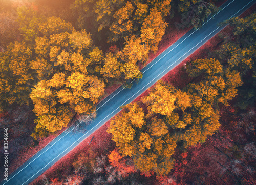 widok-z-lotu-ptaka-droga-w-pieknym-jesien-lesie-przy-zmierzchem-piekny-krajobraz-z-pusta-wiejska-droga-drzewa-z-czerwonymi-i-pomaranczowymi-liscmi-autostrada-przez-park-widok-z-gory-z-latajacego-drona-natura