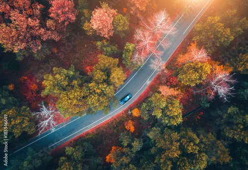 Deurstickers Luchtfoto Aerial view of road with blurred car in autumn forest at sunset. Amazing landscape with rural road, trees with red and orange leaves in day. Highway through the park. Top view from flying drone.Nature