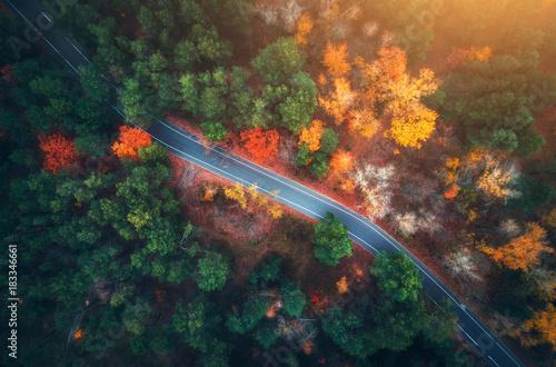 widok-z-lotu-ptaka-droga-w-pieknym-jesien-lesie-przy-zmierzchem-piekny-krajobraz-z-pusta-wiejska-droga-drzewa-z-zielonymi-czerwonymi-i-pomaranczowymi-liscmi-autostrada-przez-park-widok-z-gory-z-latajacego-drona