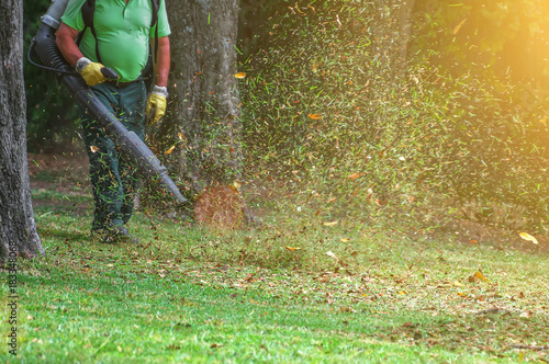 Man working with leaf blower in the park. Wallpaper Mural