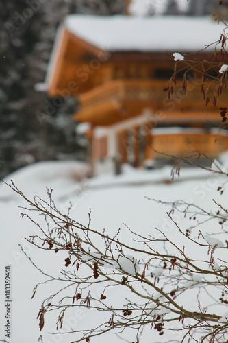 Fotobehang Zen house chalets blurred in winter