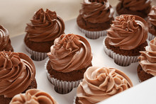Delicious Chocolate Cupcakes In Cardboard Box