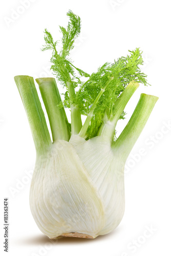 Fresh fennel isolated on white background