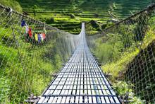 Suspension Metal Bridge In Tre...