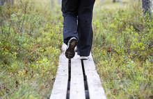 Person Walking The Duckboards ...
