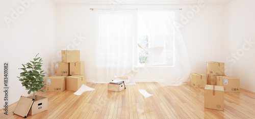 Fotografiet  Interior with moving boxes in empty white room