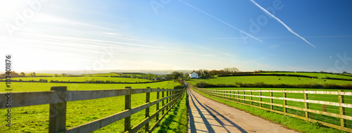Obraz Fence casting shadows on a road leading to small house between scenic Cornish fields under blue sky, Cornwall, England - fototapety do salonu