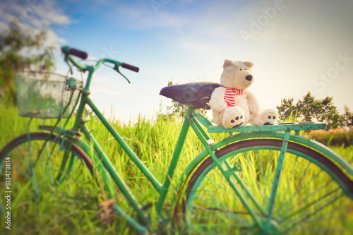 Ingelijste posters Fiets doll teddy bear on bike in field