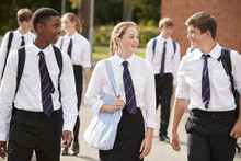 Group Of Teenage Students In U...