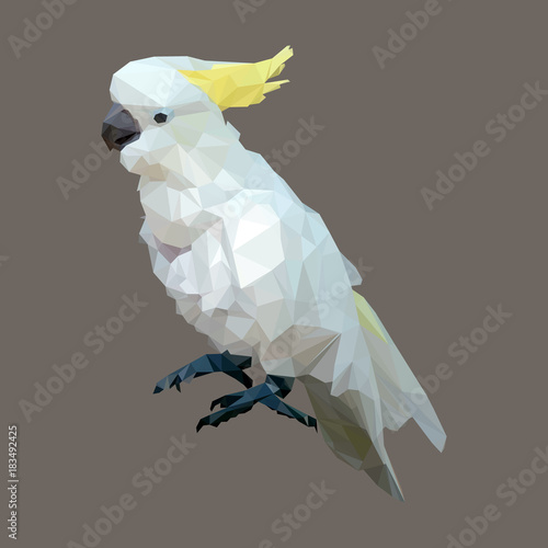 Fototapeta polygonal sulphur crested cockatoo, geometric polygon bird, isolated vector anim