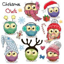 Set Of Christmas Owls On A Whi...