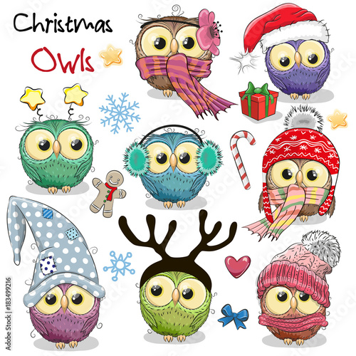Poster Uilen cartoon Set of Christmas owls on a white background