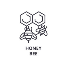 Honey Bee Line Icon, Outline Sign, Linear Symbol, Flat Vector Illustration