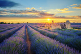 Lavender field at sunset - 183539831