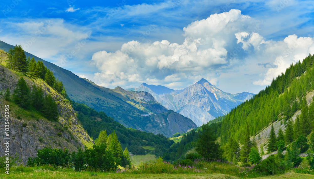 Fototapety, obrazy: View of summer mountains