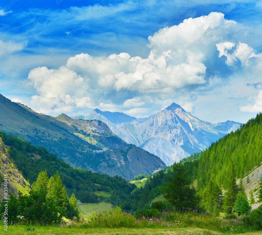 Fototapeta View of summer valley - obraz na płótnie