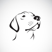 Vector Of A Dog Head(Labrador ...