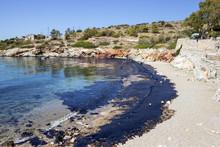 Oil Spill. Environmental Disas...