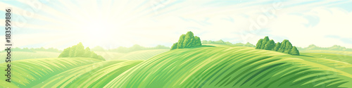 Fotobehang Wit Morning rural panoramic landscape with hills. Raster illustration.