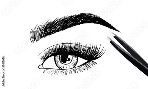 Eyes with eyebrow and long eyelashes and tweezers to build Fototapeta