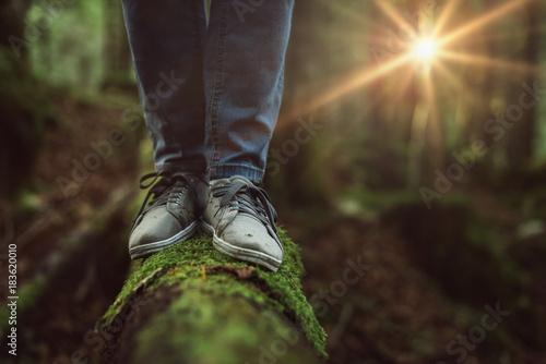 Fotografia  Woman walking on a log in the forest