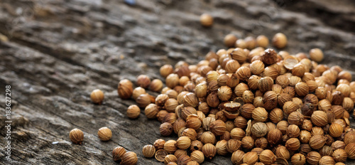 Fototapeta Dried coriander seeds in a pile set on old wooden surface. obraz