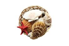 Basket Of Sea Shells Isolated ...