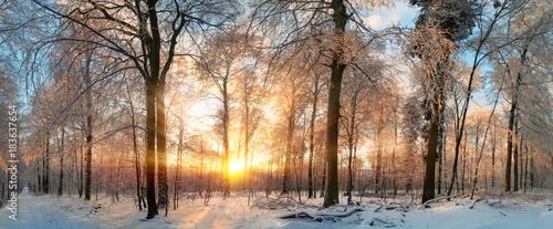 Leinwand Poster Winter Landschaft: Zauberhafter Sonnenuntergang im Wald
