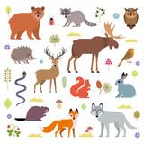 Fototapeta Fototapety na ścianę do pokoju dziecięcego - Vector illustration of forest animals: moose, deer, bear, hedgehog, rabbit, squirrel, beaver, wolf, fox, raccoon, owl, grass snake, isolated on white background.