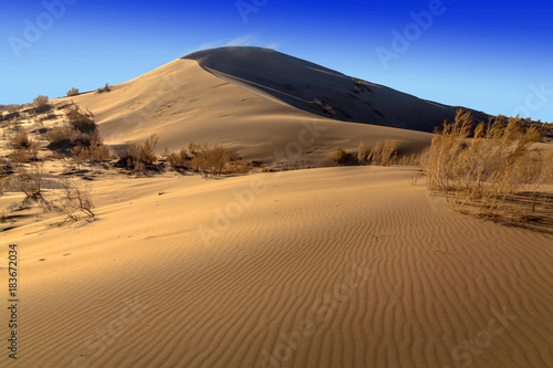 Photo The golden dunes of the Singing Barkhan