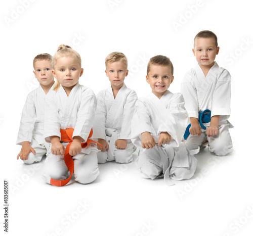 Photo Stands Martial arts Little children in karategi on white background