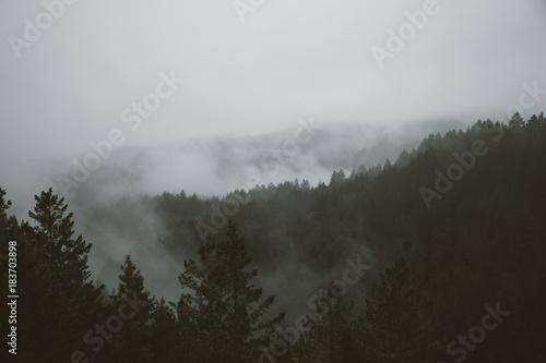 Fototapety, obrazy: foggy mountain rainy day IV