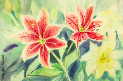 akwarela z kwiatami Lilly.