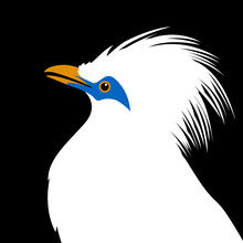 Bali Mynah Bird Head Vector Illustration Flat Style Profile