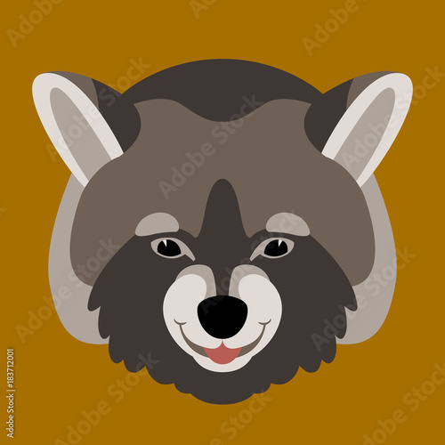 raccoon face vector illustration flat style front - Buy this