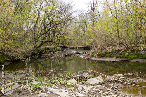 Foto op Canvas Rivier River in forest on spring