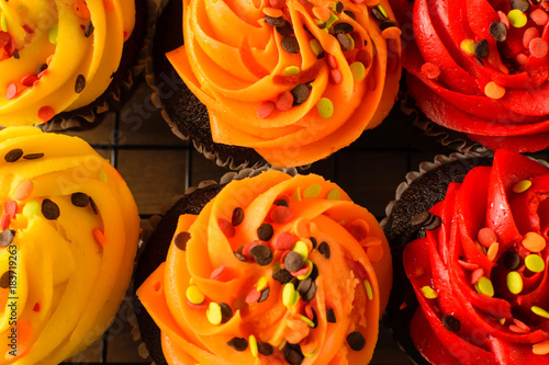 Top view colorful bright fall cupcakes with sprinkles Wallpaper Mural