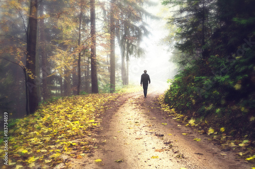 Fototapety, obrazy: Person walks in autumn seasonal forest